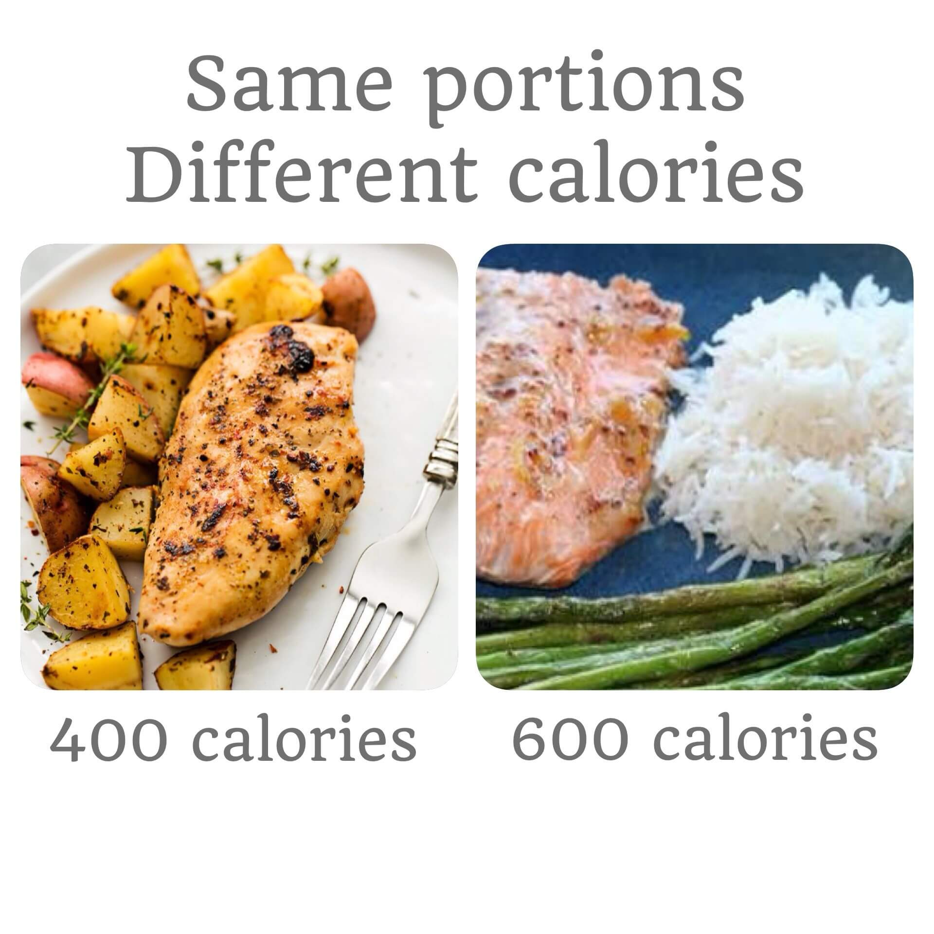 Weighing Food | My Fitness Kitchn | Healthy Meals Delivered